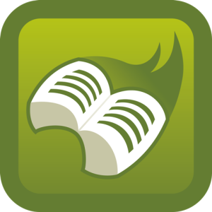 Lire la Bible dans l'ordre chronologique en 6 mois