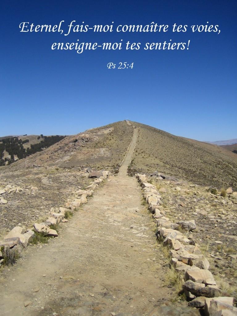 Le Seigneur est mon Guide (Psaume 25) | www.la-Bible.info