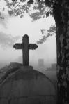 """""""Jésus dit: Laisse les morts ensevelir leurs morts; et toi, va annoncer le royaume de Dieu."""" <a href=""""http://goo.gl/JI3JS"""">La Bible</a>, Luc 9:60"""