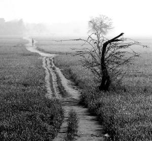 """""""Tu me fais connaître le chemin de la vie. Quand tu es là, la joie déborde, auprès de toi, le bonheur ne finit pas !"""" La Bible, Psaume 16 :11"""