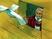 Une semaine plus tard, il envoya la colombe pour la troisième fois, mais elle ne revint pas. Noé sut ainsi que la colombe avait trouvé la terre ferme.