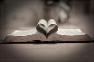 """""""Je fais ma joie de Ta parole comme celui qui trouve un grand trésor"""" la Bible, Psaumes 119:162"""