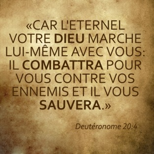 Deuteronome20_4