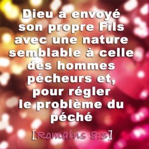 Romains 8:3