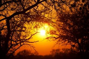 """""""La nuit est avancée, le jour approche. Dépouillons-nous donc des oeuvres des ténèbres, et revêtons les armes de la lumière."""" La Bible, Romains 13:12"""