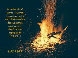 """""""Il est venu annoncer la paix à vous qui étiez loin, et la paix à ceux qui étaient près"""" la Bible, Ephésiens 2:17"""
