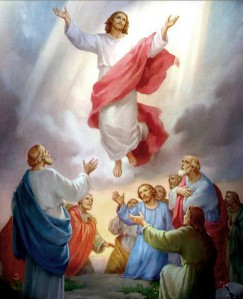 """""""Pendant qu'il les bénissait, il se sépara d'eux et fut enlevé au ciel."""" La Bible, Luc 24:51"""