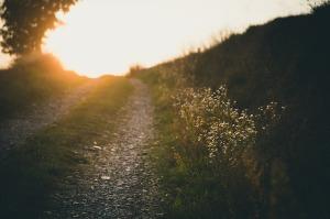 """""""Grâce à la profonde bonté de notre Dieu, le soleil levant nous a visités d'en haut pour éclairer ceux qui sont assis dans les ténèbres et dans l'ombre de la mort, pour diriger nos pas sur le chemin de la paix."""" La Bible, Luc 1:78-79"""