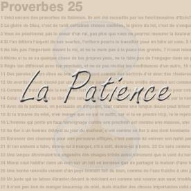 La Patience