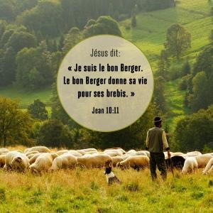 Jésus dit: Je suis-le bon berger